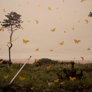 Landscape ARAHAMA #3